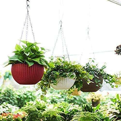 Gardening Tools - Hanging baskets