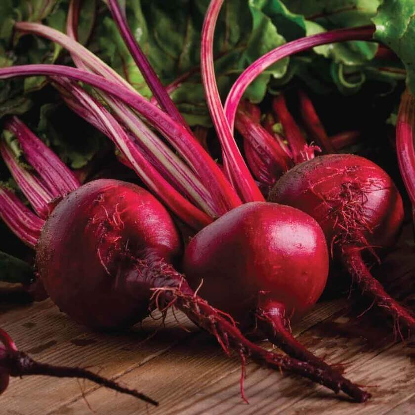 Soul of Gardening - Vegetable Plant Seeds