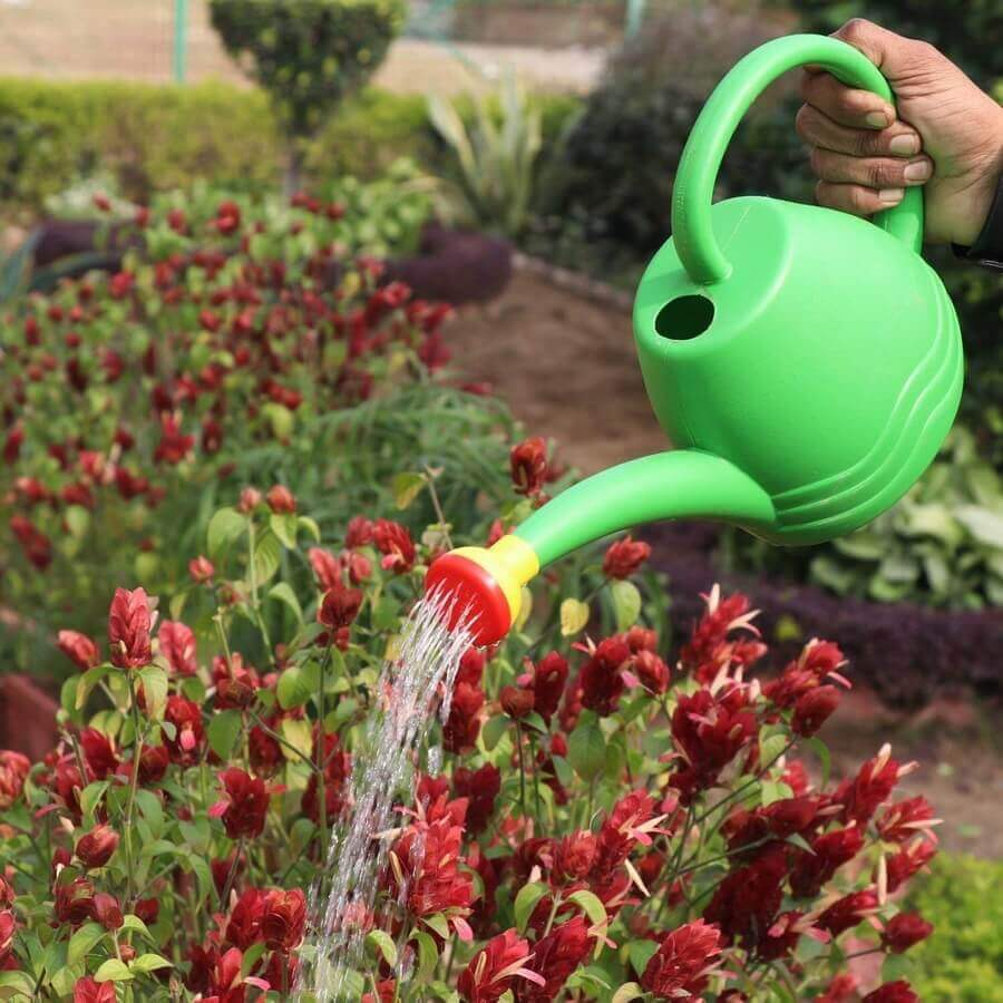 Gardening Tools - Watering Pipes and Sprays